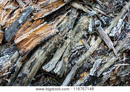 old dry wooden surface with frost - abstract natural background