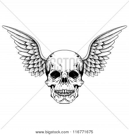 Hand drawn sketch skull with wings, tattoos line art. Vintage ve