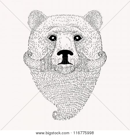 Sketch Bear with a beard and moustache. Hand drawn vector  illus
