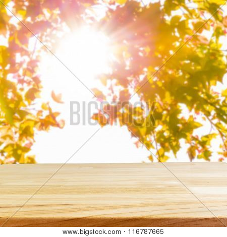 Wood Table And Blurry Sun Shining Through The Braches, Maple Tree.