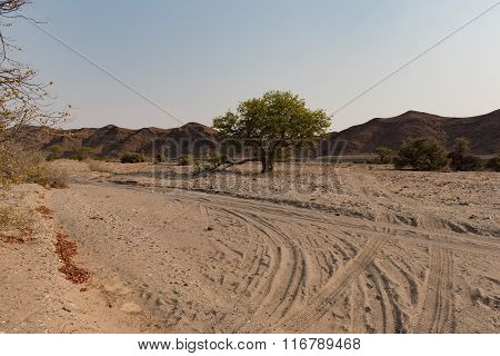 Stone Desert in Namibia Africa