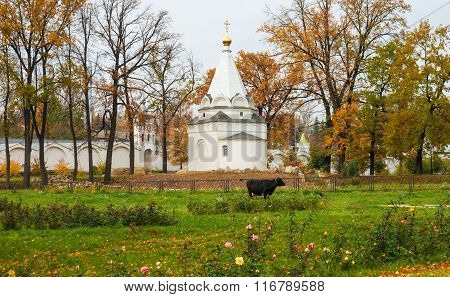 Autumn at the monastery