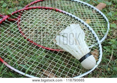 Shuttlecock and badminton racket on green grass. ** Note: Shallow depth of field