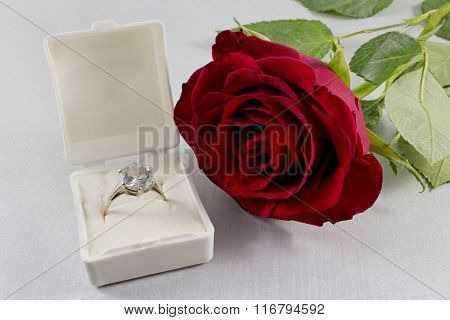 Closeup of red rose and white box with golden engagement ring