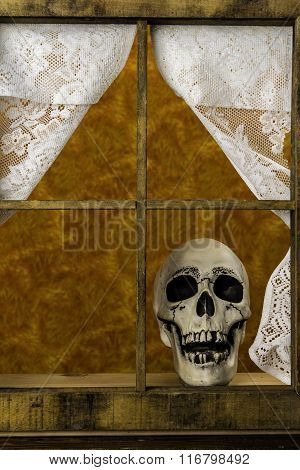 Skull in Window
