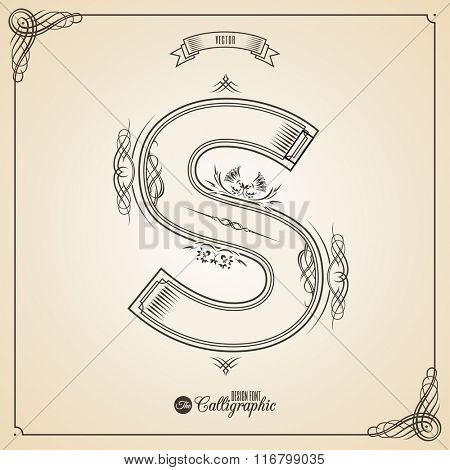 Calligraphic Fotn with Border, Frame Elements and Invitation Design Symbols. Collection of Vector glyph. Certificate and Decor Design Elements. Hand written retro feather Symbol. Letter S