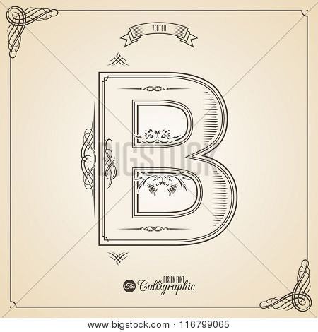 Calligraphic Fotn with Border, Frame Elements and Invitation Design Symbols. Collection of Vector glyph. Certificate and Decor Design Elements. Hand written retro feather Symbol. Letter B