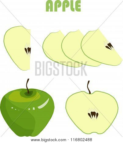 Green apple, brown roots, slices on white background, hand drawing, painting