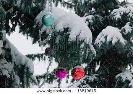 Street Christmas tree decorated with the multicolored balls