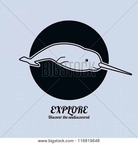 Illustration of a narwhal. Minimalist vector illustration.