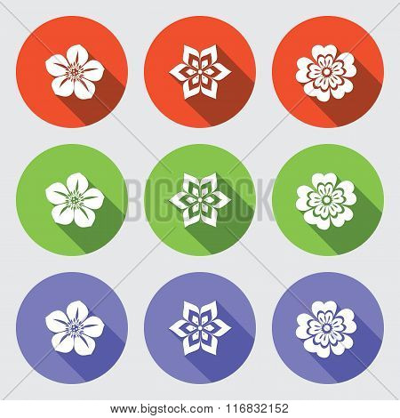 Flower icon set. Camomile, daisy, orchid primula. Floral symbol. White sign on round colored button