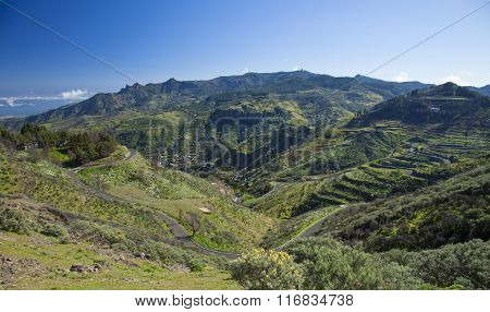Central Gran Canaria, View Across Barranco De Las Lagunetas