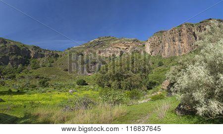 Gran Canaria, Caldera De Bandama And Pico De Bandama