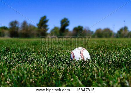 Baseball At A Field In California