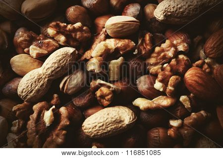 Background of hazelnuts, pistachios, walnuts, almonds, acorns and peanuts