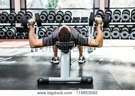 Muscular man lifting dumbbells while lying on bench at gym