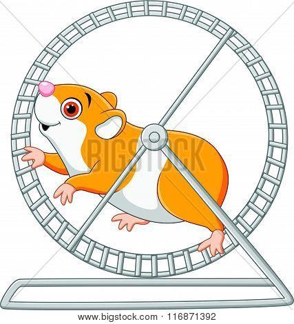Cute hamster running in roling wheel