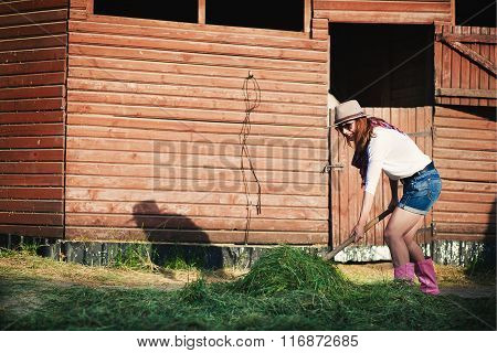 woman on stables