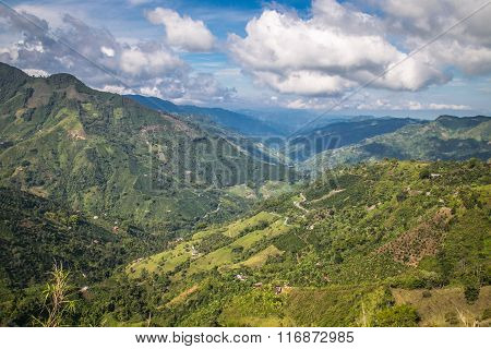 green mountains in colombia, latin america, palms and coffee in colombia