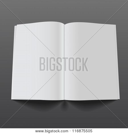 vector magazine mockup5
