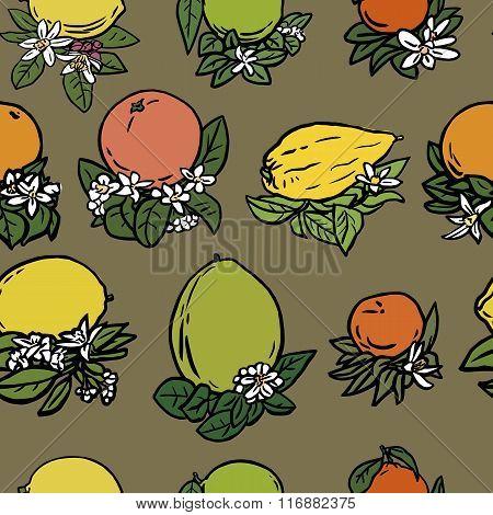 Various tropical citrus fruits