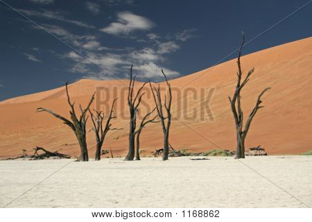 Clouds Over Deadvlei