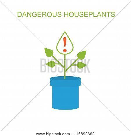 Dangerous plants.