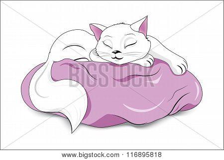 White Sleeping Cat