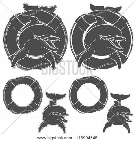 Set of dolphin logo design element. Vector