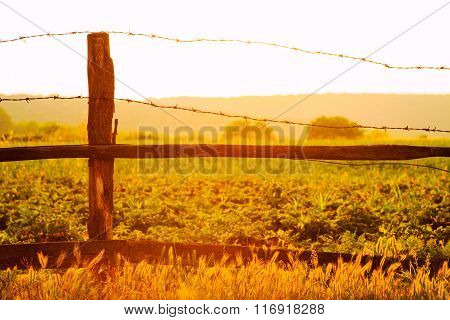 Old Wooden Fence With Barbed Wire Against The Sun