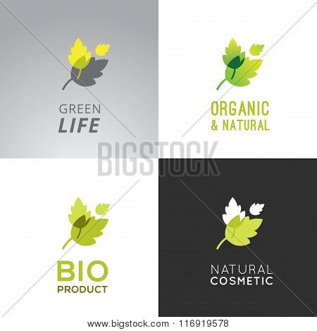 Green Lable Collection