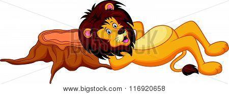 vector illustration of lion cartoon sleeping isolated on white