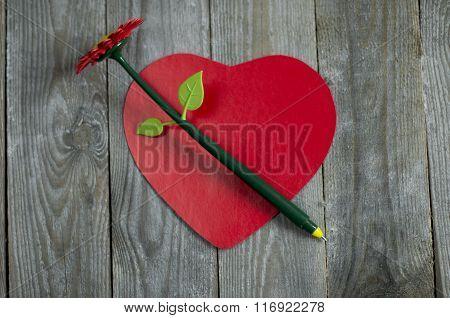 Creative Pen Flower
