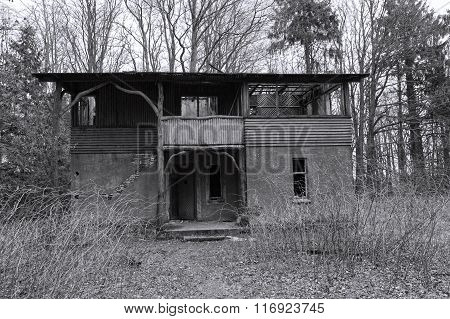 Derelict House In The Forest