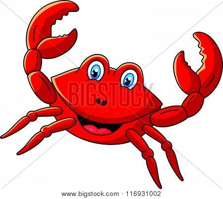 vector illustration of Cute crab cartoon isolated on white