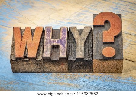why question in vintage letterpress wood type stained by color inks