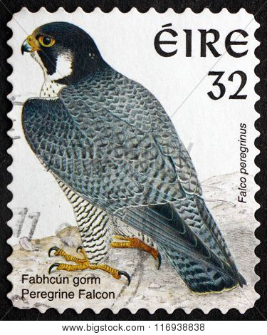 Postage Stamp Ireland 1997 Peregrine Falcon, Bird Of Prey