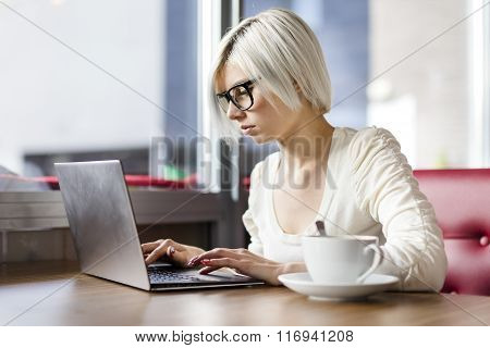 Young focused woman working with laptop computer in cafe