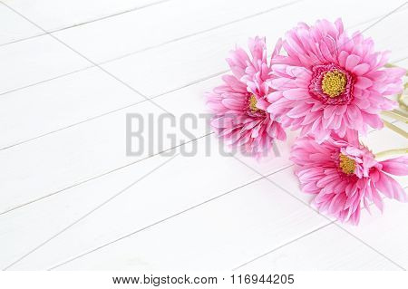 gerbera flower on white wood background