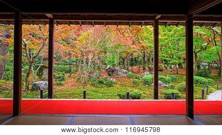 Autumn Japanese Garden At Enkoji In Kyoto