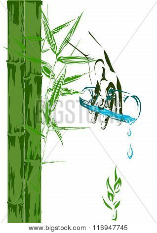 Bamboo Shoots And A Glass Of Clean Water