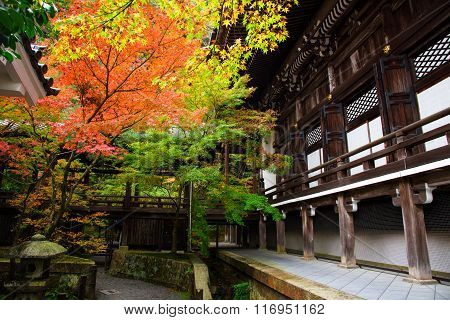 Autumn Colors At Eikando Temple In Kyoto