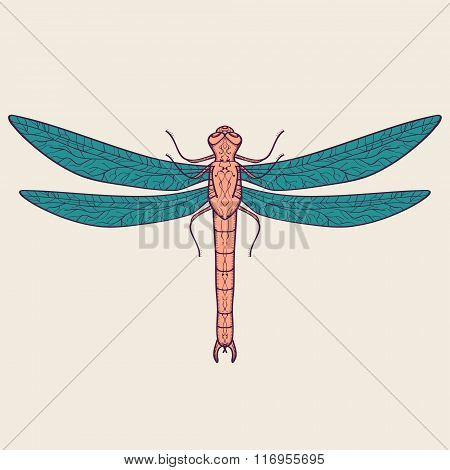 Vector colorful illustration of decorative dragonfly. Abstract design