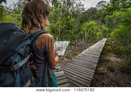 Lady hiker looking at the map before road branch