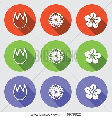Flower icon set. Tulip, camomile, daisy, orchid. Floral symbol. White sign on round green, orange