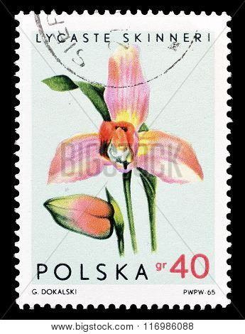 Poland 1965