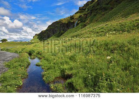 Neighborhood Seljalandsfoss. Iceland in July. Green meadows and clear streams