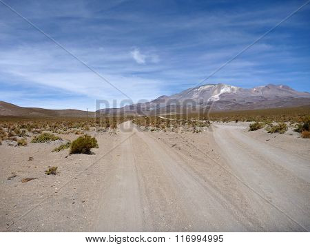 Road To Volcan Isluga At Chilean Altiplano