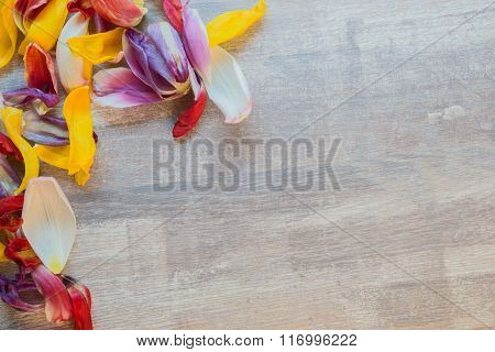 Leaves of Tulips forming frame on wooden table