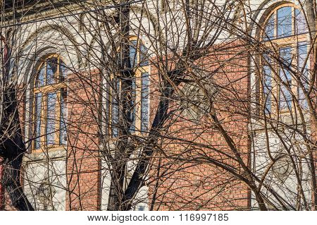 Building With Windows And Bare Trees. Architectural Detail Of Building And Arch Windows With Bare Tr